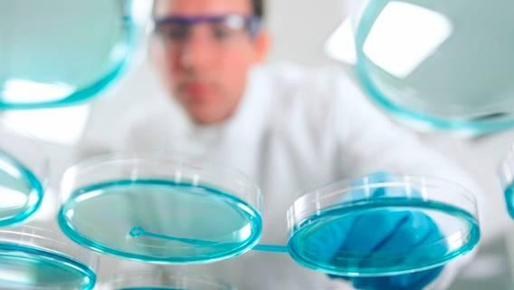 Великобритания ведет переговоры с ОАЭ о поддержке национального фонда медико-биологических наук ИноСМИ