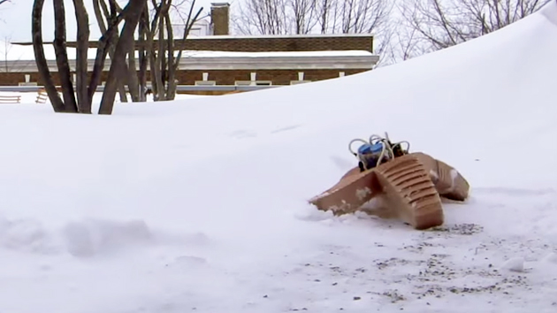 Watch this soft robot walk through snow and get squished by a car