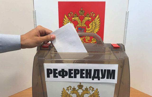 Анна Долгарева: К вопросу о референдуме по пенсиям и базовом доходе россия