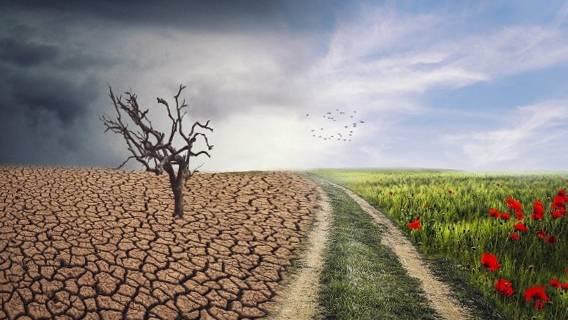 Байден пригласил Владимира Путина и Си Цзиньпина на саммит по климату на фоне растущей глобальной напряженности