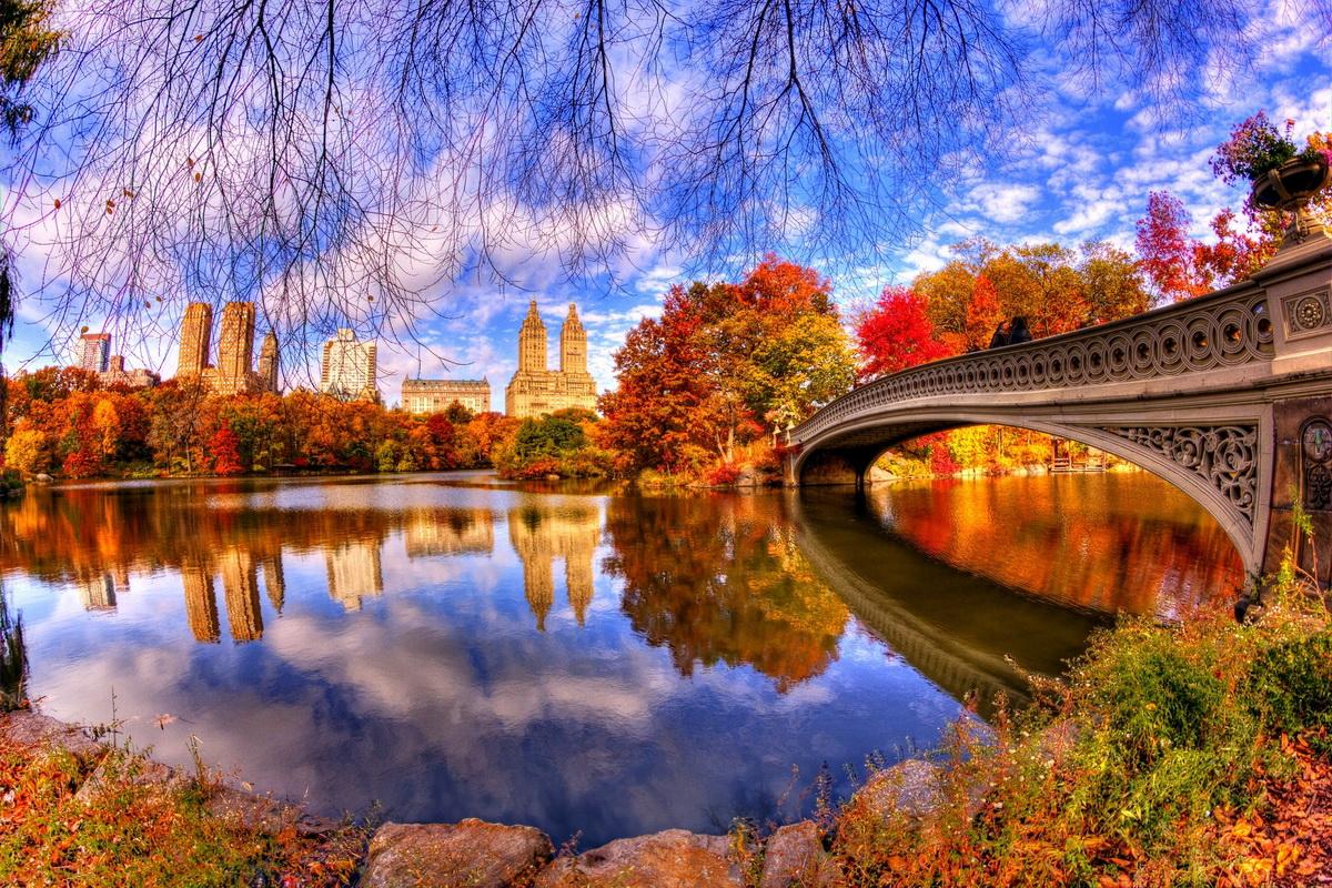 декоративном золотая осень лучшие фотопейзажи американским меркам ружье