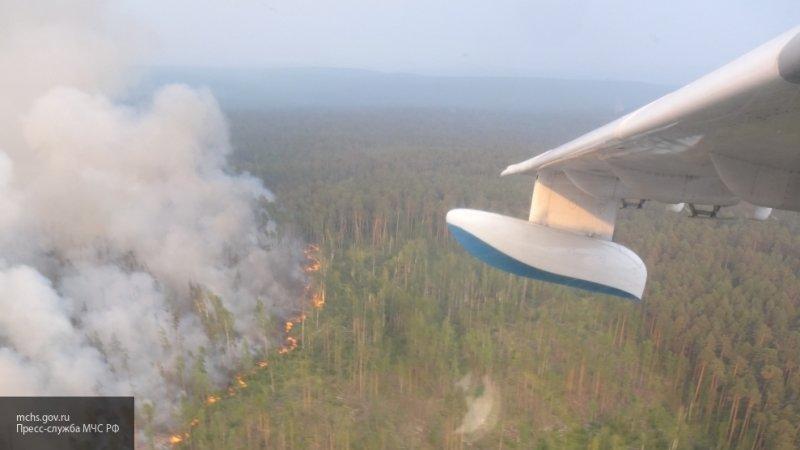 Полномочия по тушению лесных пожаров предложили передать на федеральный уровень