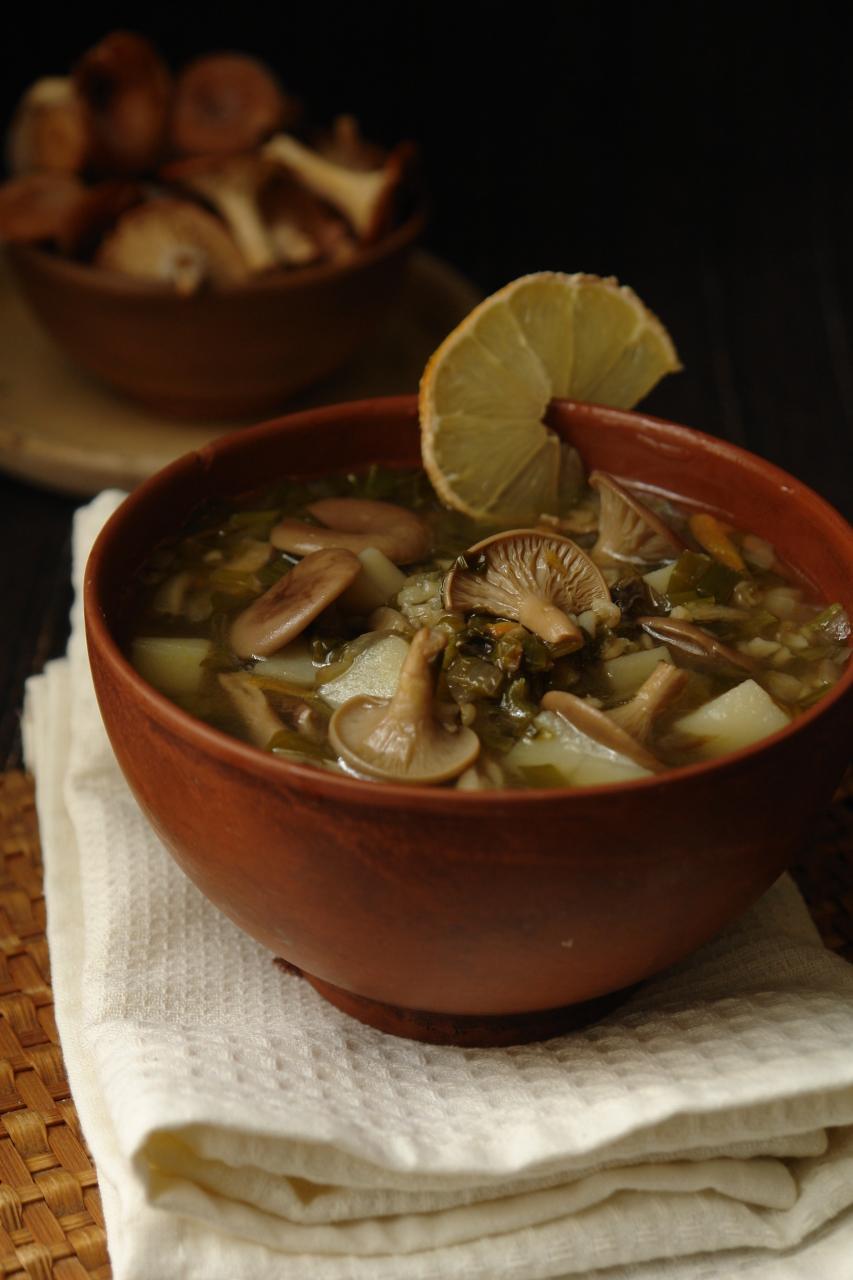 Зелёный борщ с грибами кулинария,супы