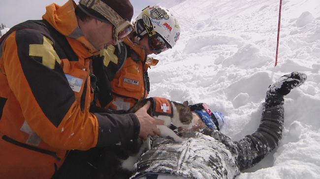 Помогут ли кошки спасателям искать попавших в лавину людей