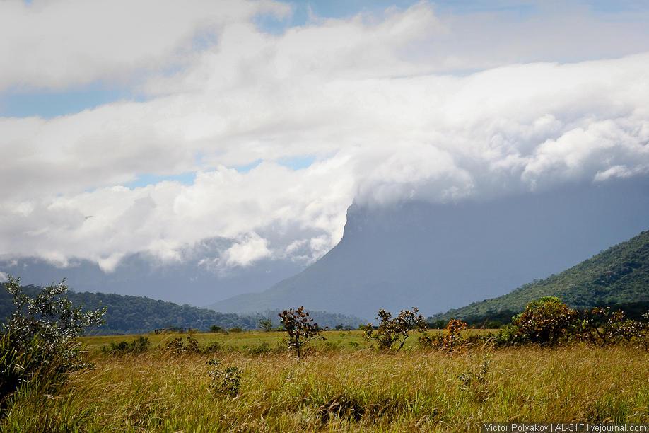 Анхель— самый высокий вмире водопад
