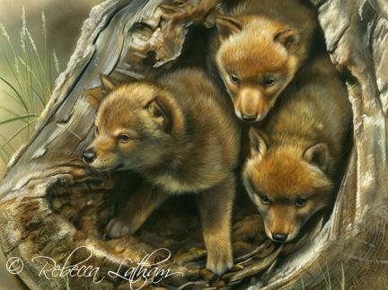 Rebecca Latham с любовью к живописи и животному миру живопись, rebecca latham