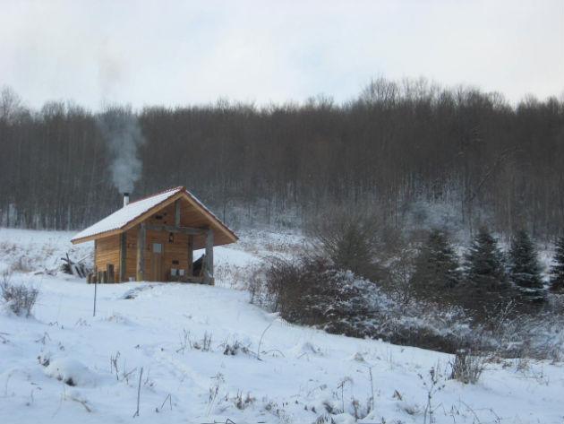 Хижина в лесу: смотрим дома, построенные вдали от цивилизации
