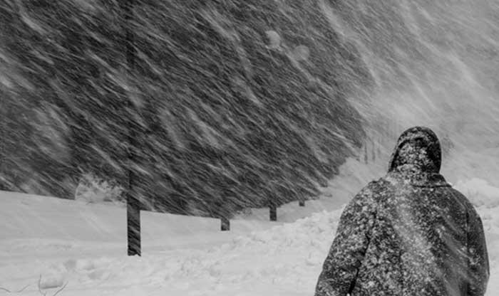 Александр Соколов. Снег заметет следы...