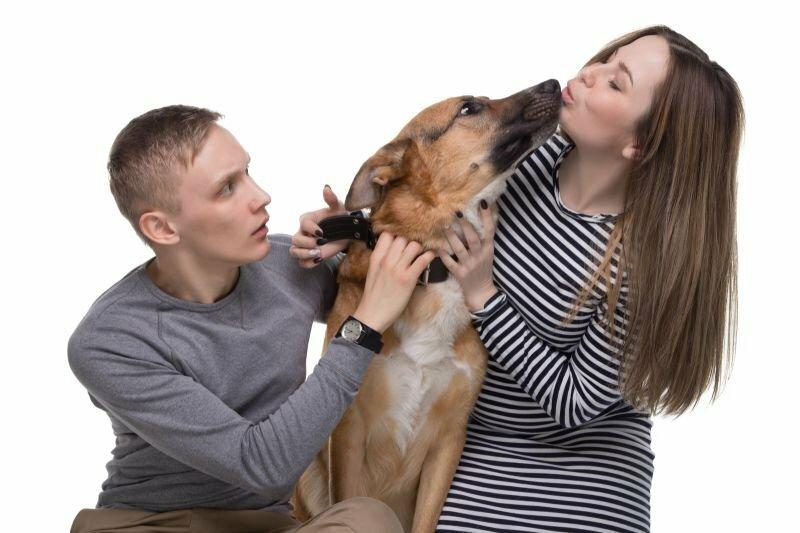 «Мой пёс ревнует меня… К мужу!»