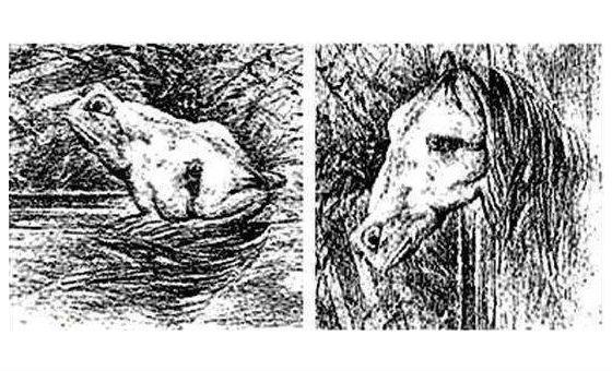 Лошадь или лÑгушка