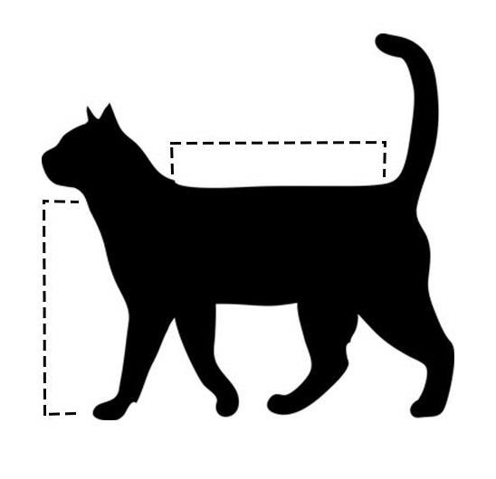 Сумка-переноска для кошки своими руками: выбор материала, выкройки, порядок шитья мастер-класс,шитье