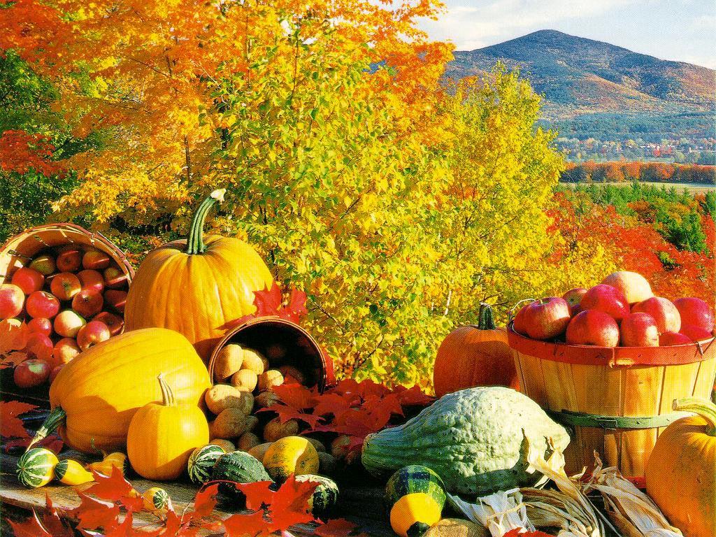 Народный календарь сентября