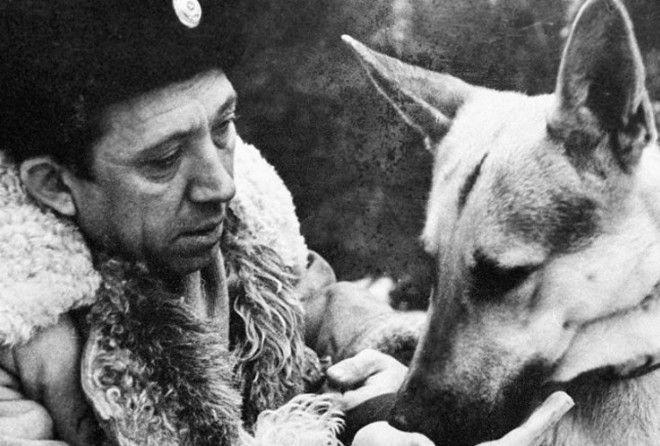 Как Юрий Никулин и пес Дейк подружились на съемках фильма