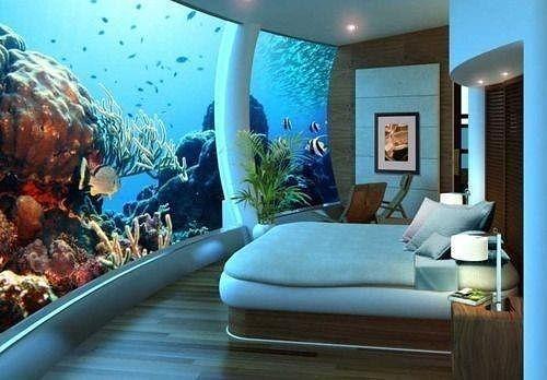 Вот что значит аквариум