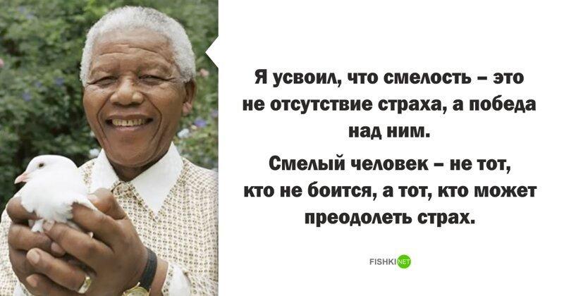 Нельсон Мандела высказывания, звезды, знаменитости, известные люди, интересно, мудрость, подборка, цитаты