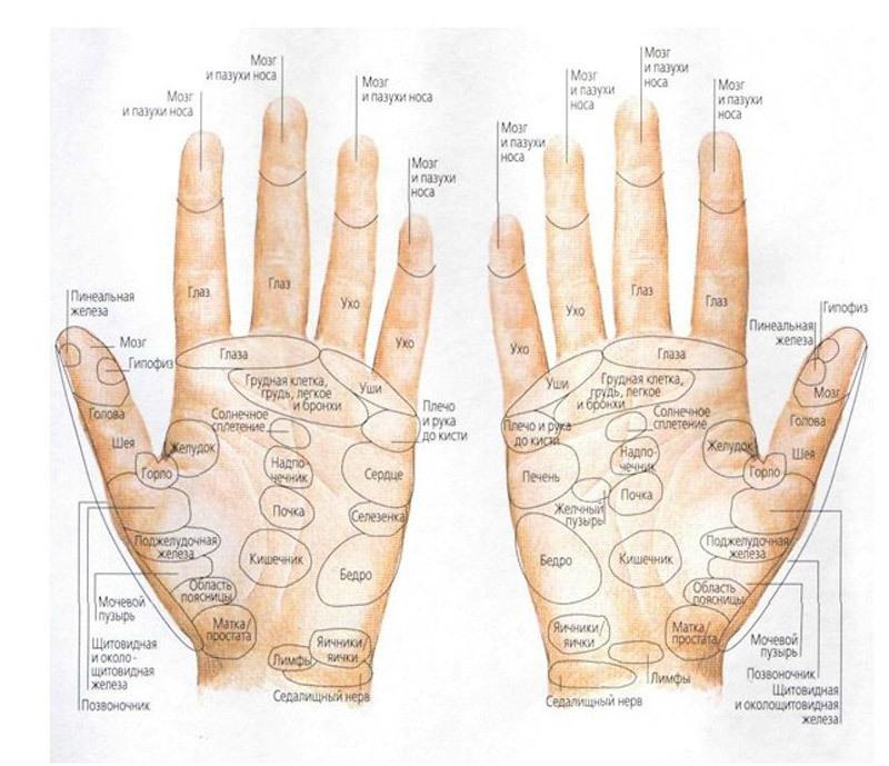 Ваше здоровье в целительной силе ваших рук