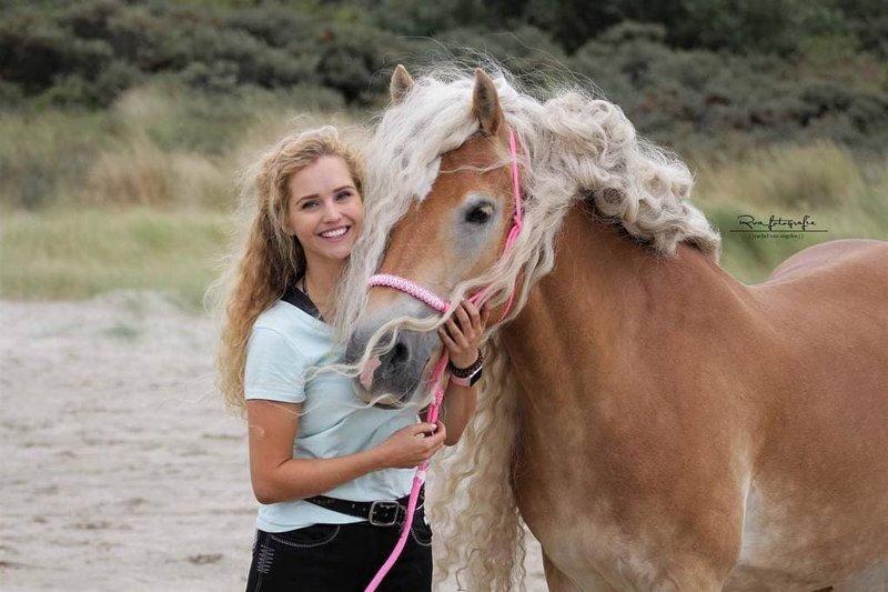 И это объяснимо, ведь ими можно любоваться бесконечно! голландия, девушка, животные, красота, лошадь, фото, шевелюра