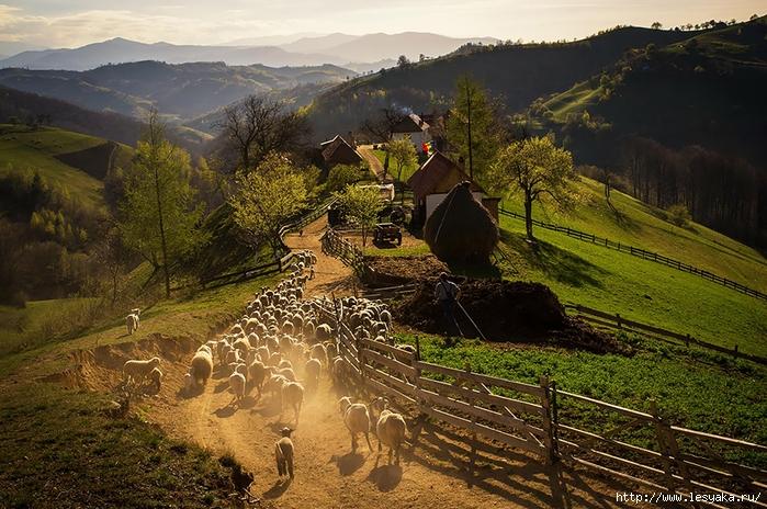 22 самые мистичные и загадочные фотографии Румынии!