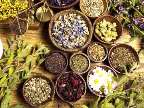 Растения, привлекающие удачу и защищающие от бед