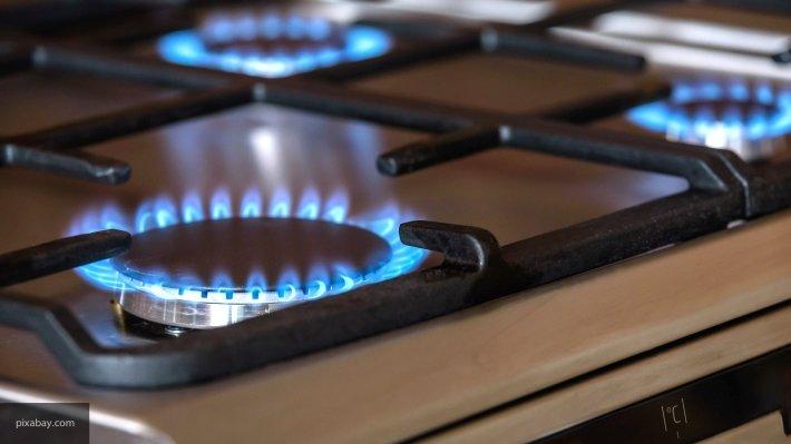 Минстрой: «Полный отказ от газовых плит в быту – крайность»