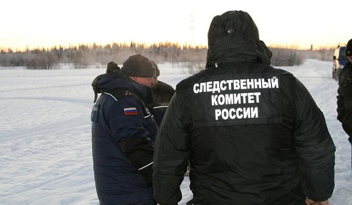 В Ульяновске мать зарезала т…