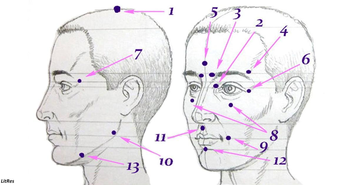 13 точек, которые запускают удивительные процессы в организме