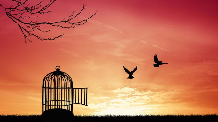 Можно ли быть свободным в браке?
