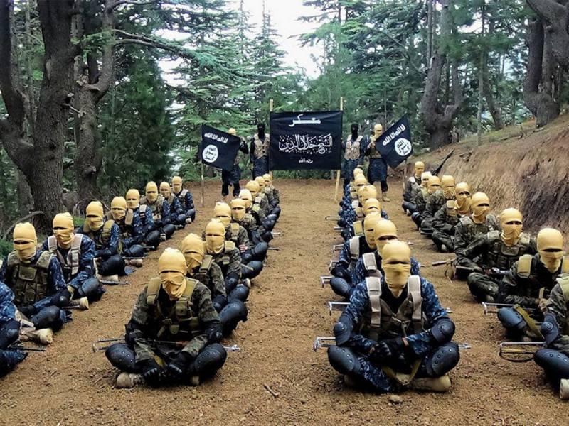 Террористы из Сирии и Ирака …