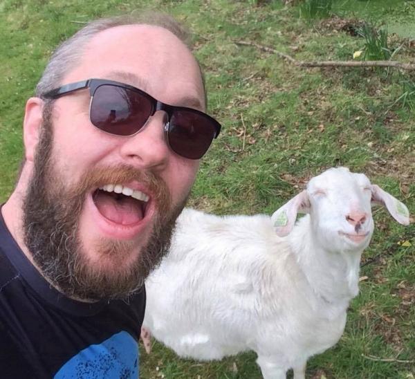 Веселые фото с животными