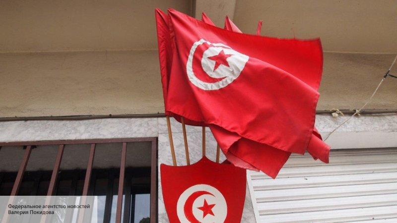 Эксперт рассказал о протестах профессоров в Тунисе