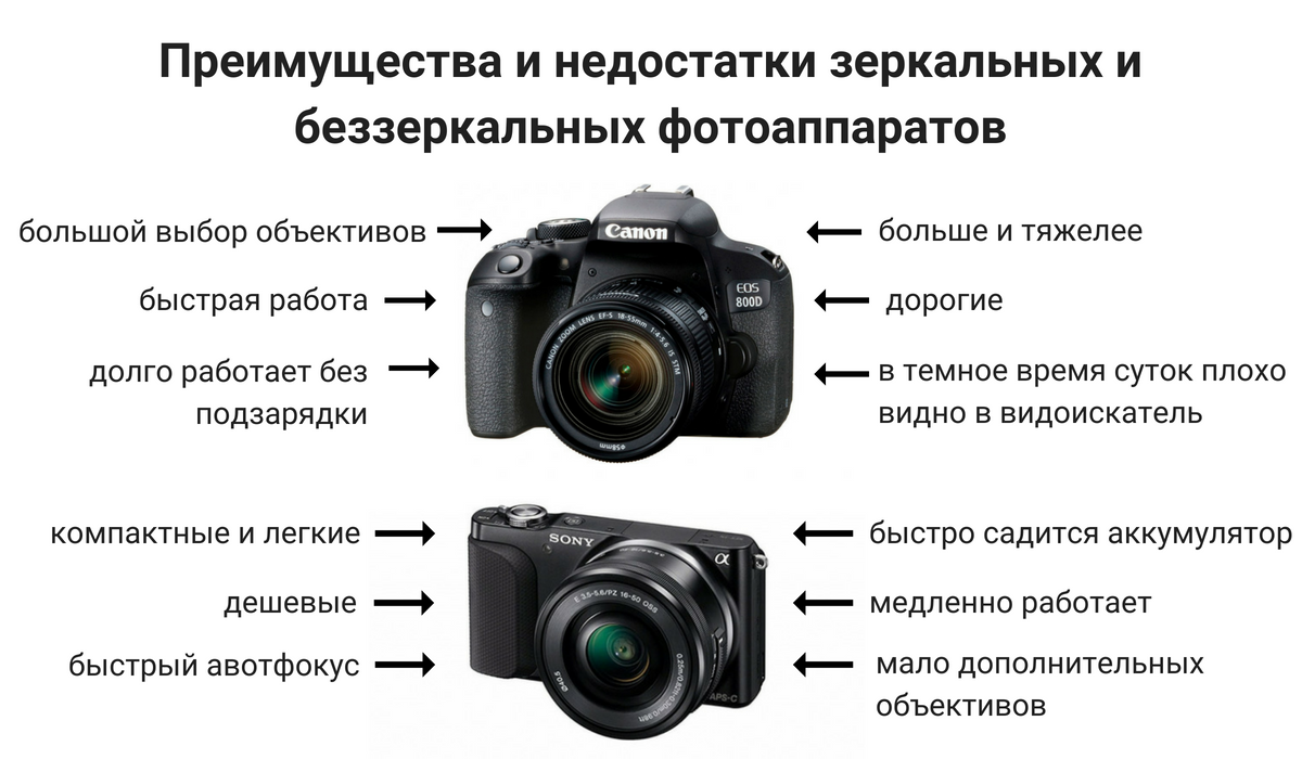 выемкой сделать отличие беззеркалок от зеркальных фотоаппаратов красивое