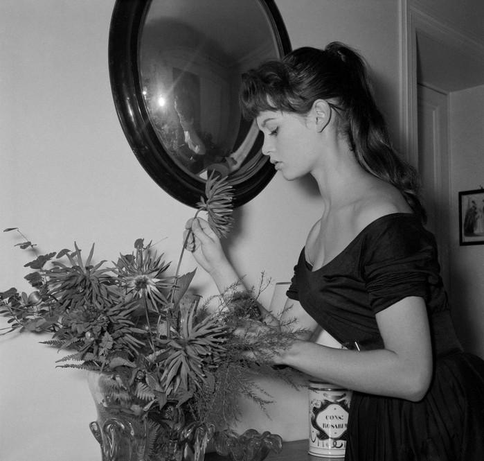 """""""Самая красивая женщина в мире"""""""