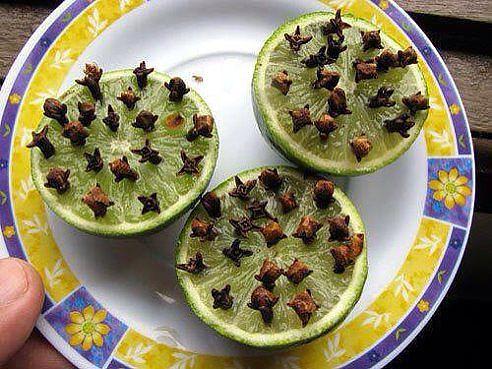 Самое эффективное и натуральное средство от комаров!