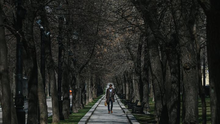 Больше 3 млн москвичей загулялись на полдня. Вскоре число заражённых подскочило до 1,3 тысячи в день россия