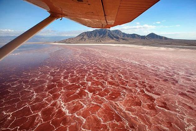 Натрон: озеро с водой кроваво красного цвета
