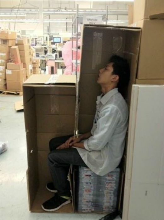 Спать в коробке, почему бы и нет? | Фото: Pikabu.
