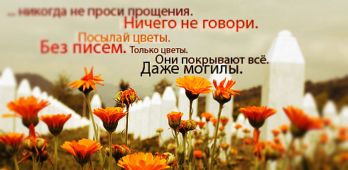 цитаты со смыслом и цитаты в картинках 19