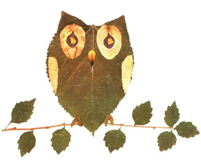 парке рисунки из листьев сова расскажите, что