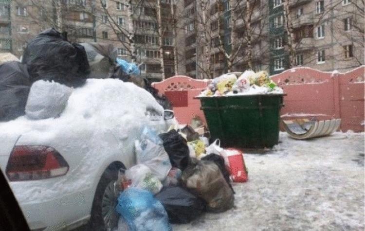 В Питере водителю объяснили, что не нужно парковаться возле мусорных баков