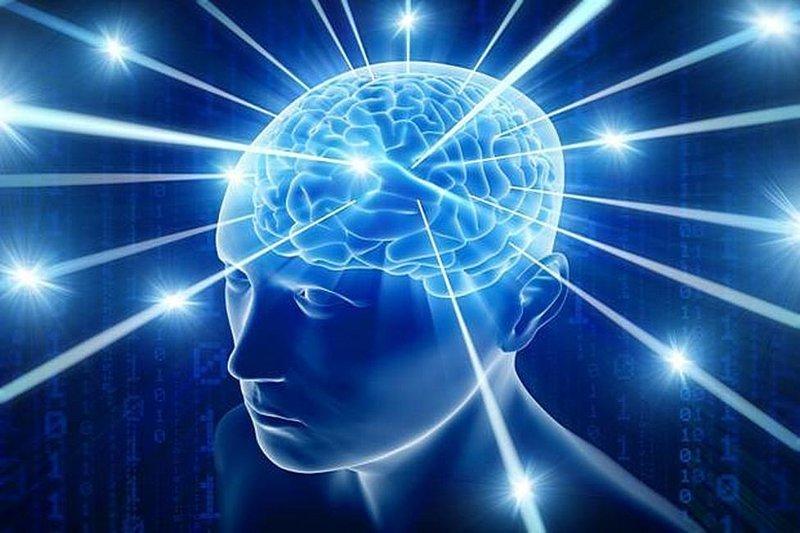 Занятие незнакомой деятельностью — лучший способ развития мозга. Общение с теми, кто превосходит вас по интеллекту, также является сильнодействующим средством развития мозга. информация, картинки, факты