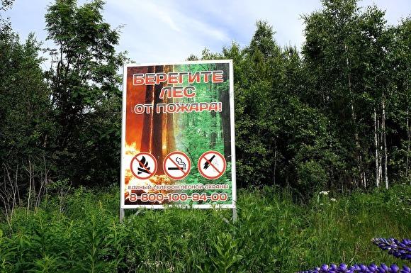 Минприроды предлагает кабмину лишить губернаторов права решать, где можно не тушить пожары