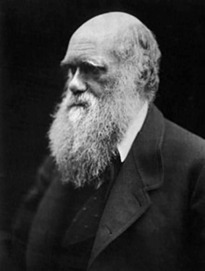 Дарвинизм как антинаука - Ros Orthodox — КОНТ