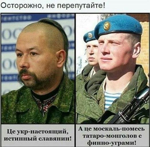 Мнение чеченца про украинцев