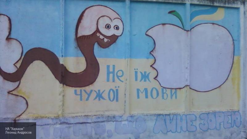 Языковая политика на Украине дискриминирует нацменьшинства, сообщили в ОБСЕ